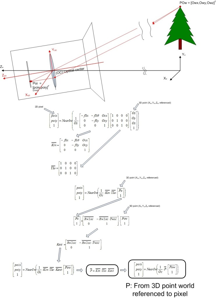 P matrix definition